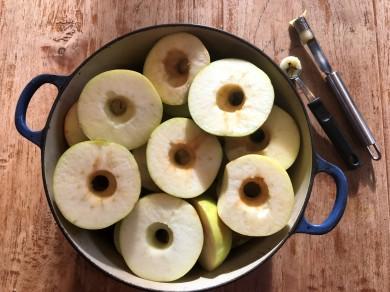 apple core.jpg